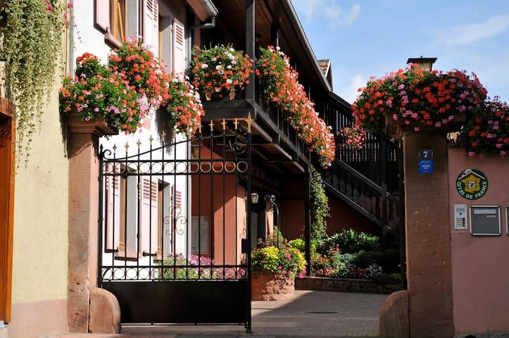 Gîtes Weyer La maison - Bergheim - Casa