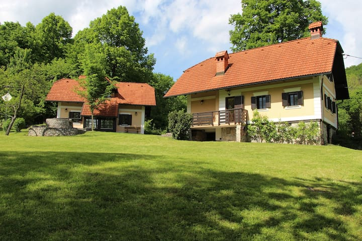 Country house 1 near Ljubljana - Gradenc - Casa