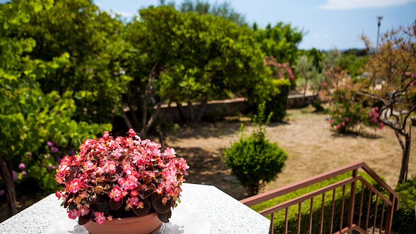 Speranza cosy place right above the beach - Krk - Daire