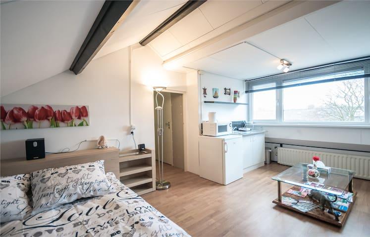 cozy studio at Amsterdam Schiphol - Uithoorn - Maison