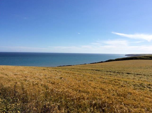 Absolute peace and sea views - Ballycroneen - Hus