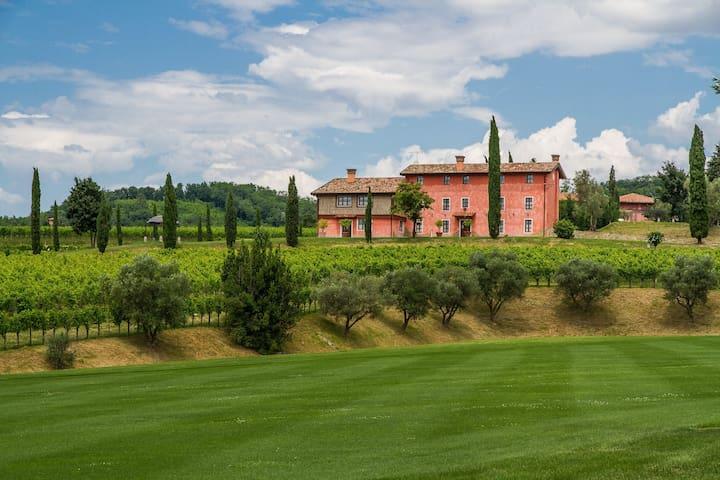 Appartamenti nelle Vigne - Capriva del Friuli - Apartemen