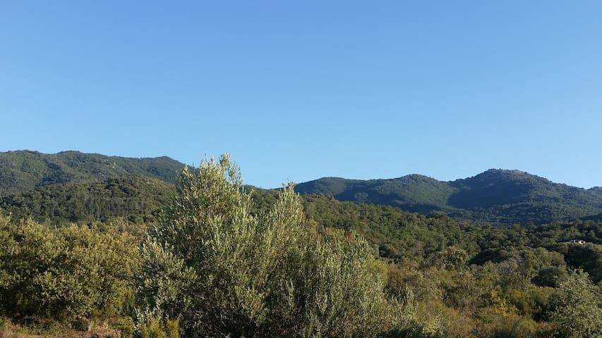 Chambre calme au coeur des Albères - villelongue dels monts 66740 - Bed & Breakfast