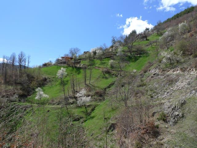 Restored house with amazing views - Smolyan - Casa
