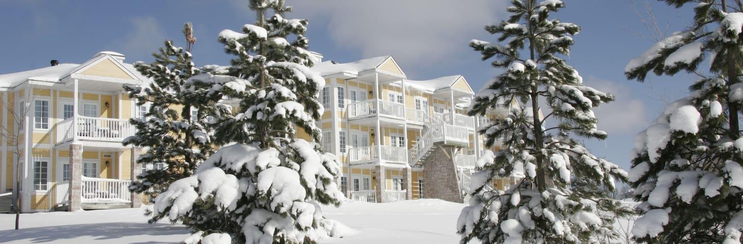 ==Dec 23-30, 2017 == Luxury Ski-In-Ski-Out Resort - Shanty Bay - Appartement