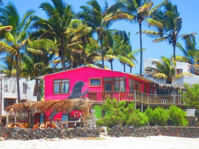 Galapagos House on Beach - Exotic - Puerto Villamil - Casa