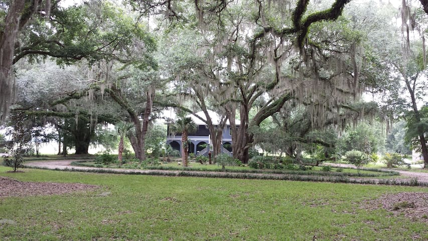 TLH Lake Home in 5 acres near I-10! - Tallahassee - Hus