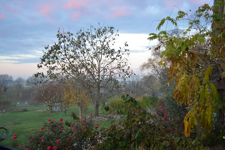Make it a memorable cottage getaway - Rose Suite - Fairplay - Bed & Breakfast