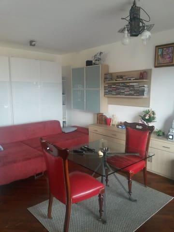 Vista montana e comodo ai servizi - Pinerolo - Apartment