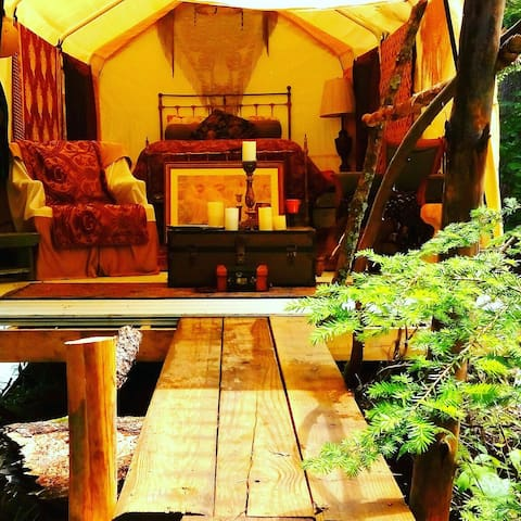 Glamping  luxurious tent in forest - Haines Township