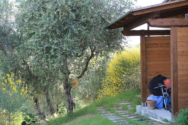 Casa bifamiliare nella campagna. - Livorno - Stadswoning