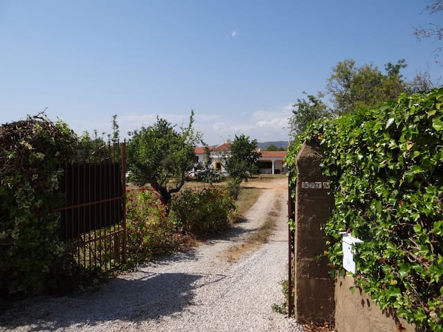 Casa Tia Bentinha, heritage home on 3 hectare farm - Quelfes