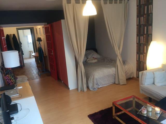 Huge 1Bedroom apart, near Paris - Chevilly-Larue - Appartement