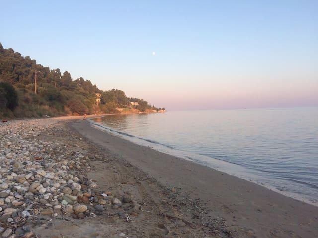 Charming villa by the sea - Nea Skioni - Hus