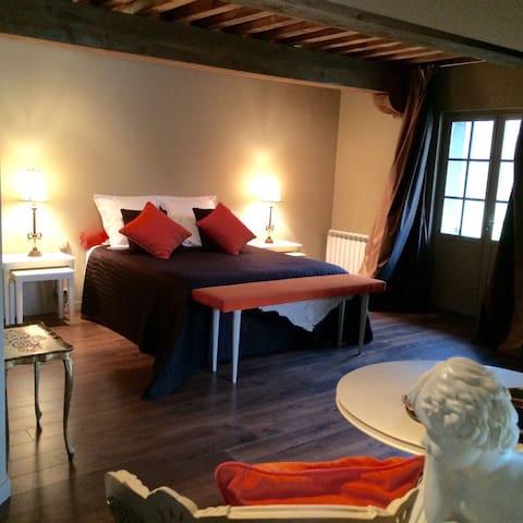 2 Chambres d'hôtes de charme - Anthon - Bed & Breakfast