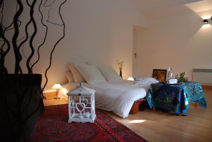 Le PRANA chambre AIR - Metz - Bed & Breakfast