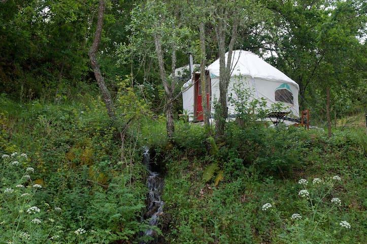 Riverview Yurt in Central Portugal (sleeps 2). - Póvoa de Midões - Iurta