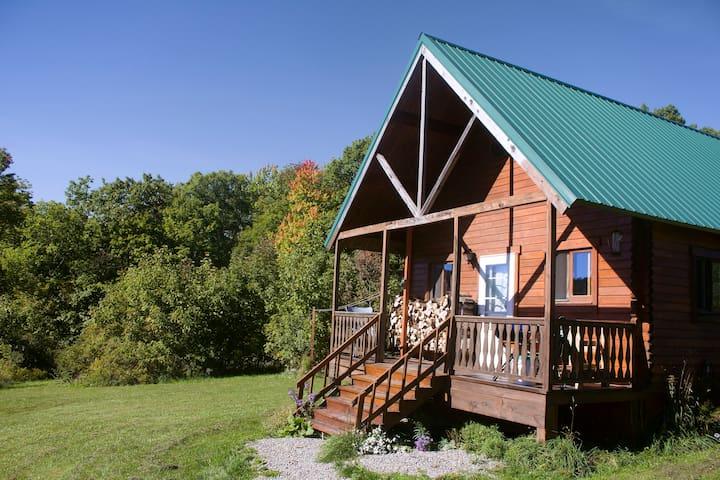 Mountain Queen Log Cabin - Freeville - Houten huisje