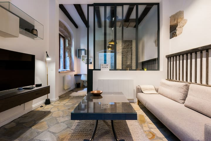 Design flat in the very center of Annecy - Annecy