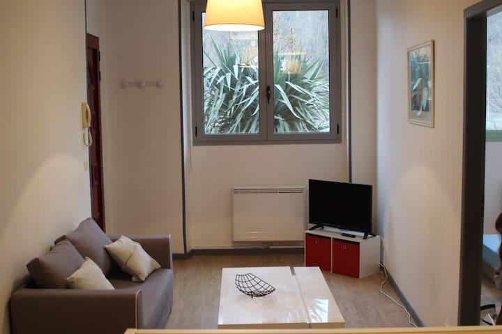 T1 bis vue sur le Gave - Lourdes - Apartemen