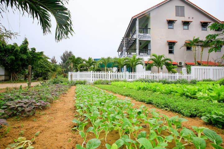 "Quiet Riverside Studio in ""Herbal Village"" #4 - Hội An - Apartmen perkhidmatan"