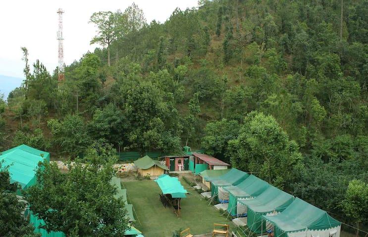 Camp Sparrow - Safari Tents - Nainital - Tent