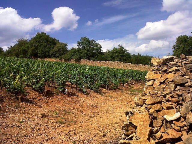 Hâvre de paix en Beaujolais - Cogny - Hus