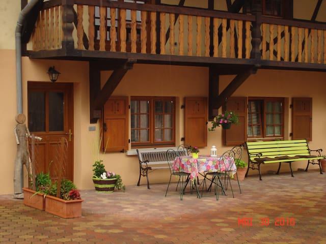 Gîte rural cosy au centre de l'Alsace - Artolsheim