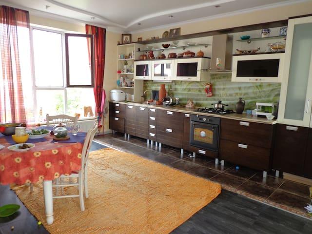 Room in a Cosy House with Garden. - Ciorescu - Casa