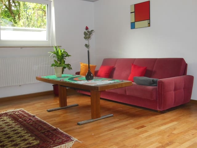 Complete and Lovely Holiday Home in the Souterrain - Forchheim - 公寓