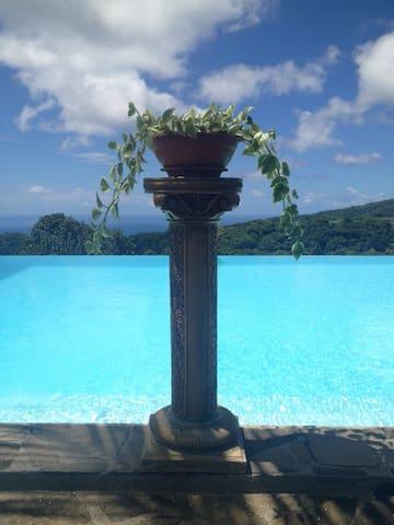 Villa Pelée - Fleurie - - Le Morne Rouge - Villa