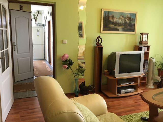 Cozy 2 bedroom apartment w/ great view & bikes 4U - Bratysława - Apartament