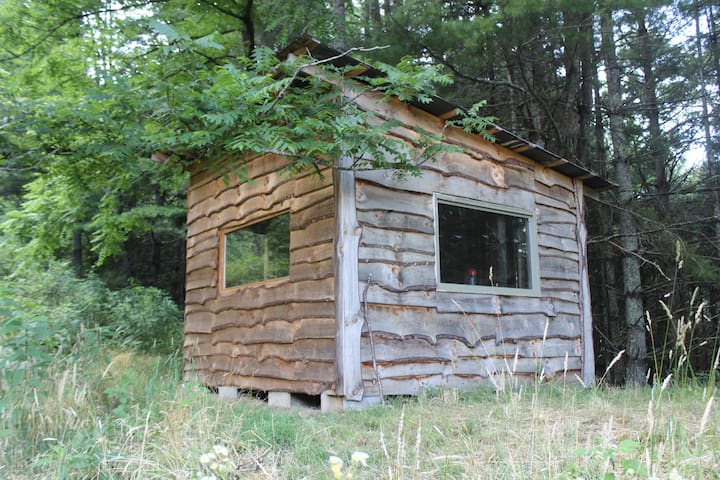 Snaggy Mountain Secluded Cabin - Burnsville
