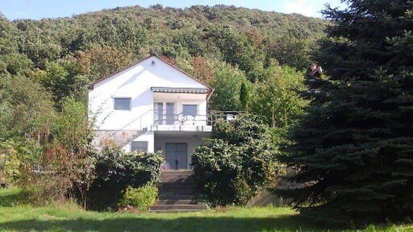 House Hungary,Esztergom near Danube - Esztergom - Hus