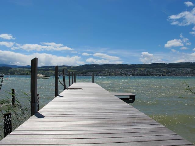 Beautiful flat on lake Zurich - Meilen - Apartamento