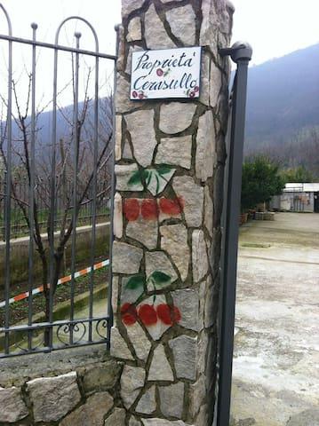Villa Cerasiello (affitta 3 camere) - Bracigliano - Villa