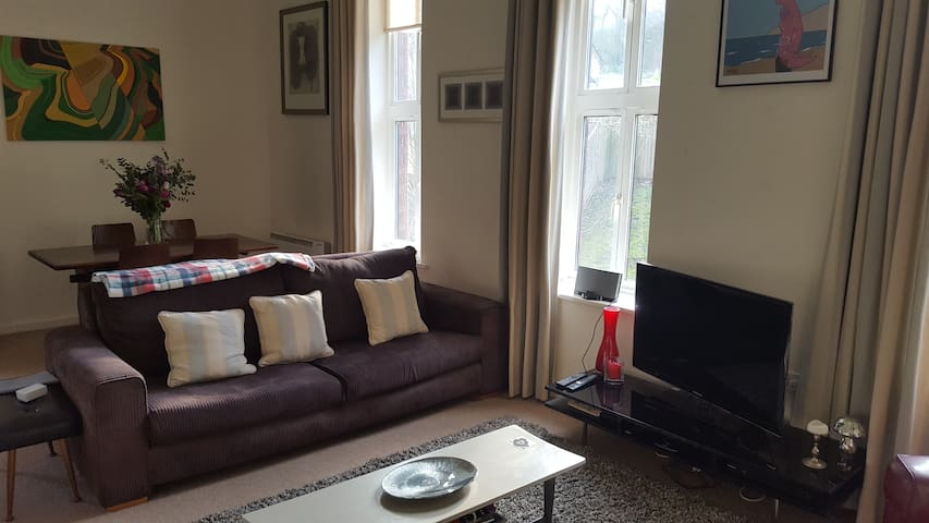 Beautiful Apartment In Old Victorian Hospital - Sheffield  - Apartemen