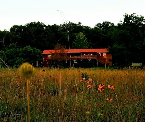 Mad Moose Ranch, room 2 - Eureka Springs, - Haus