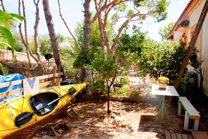 Finca mit mehr als 400 tragenden Oliven - Montgat