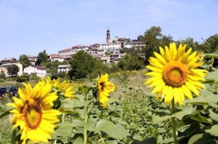 Casa Vacanza nelle Langhe e Monferrato - Frassinello Monferrato - Apartamento