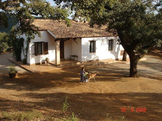 Casa Rural LOS BOGANTES - Cazalla de la Sierra - Huis