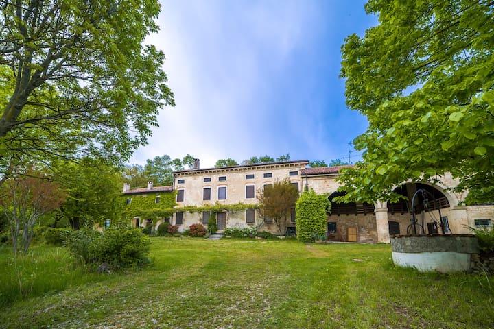 Tenuta Gli Olmi - Casolare XVIII sec. - San Giovanni in Monte - Mossano - Casa