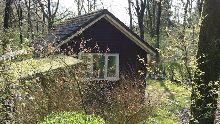 Slapen in het Drentse bos..! - Uffelte - Дом