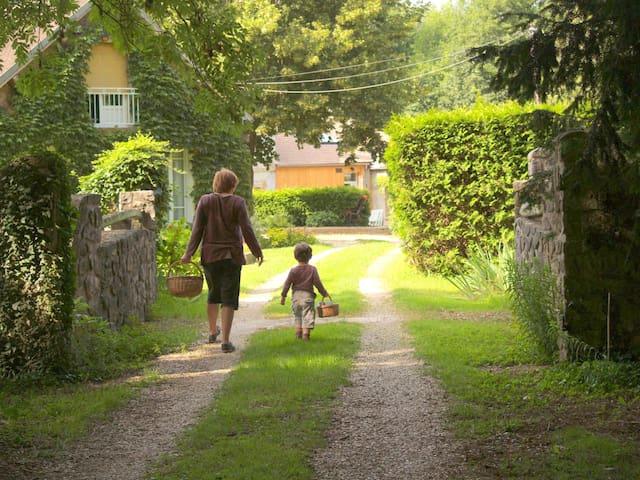 Maison rénovée et chaleureuse, au calme - Nailly