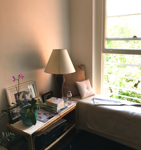 Guest room in sunny apartment - Double Bay - Appartement