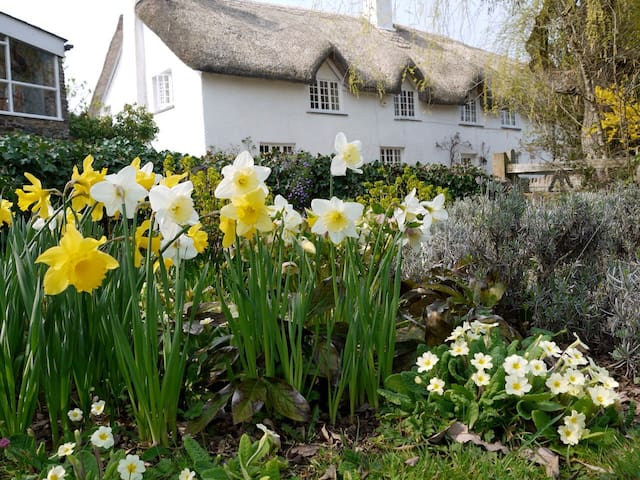 Beautiful, traditional, thatched Devon longhouse. - Christow - House