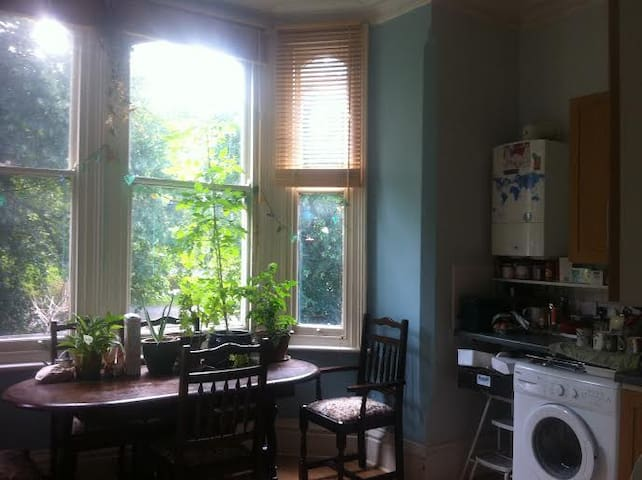 Cosy and central flat surrounded by green space - Nottingham - Lägenhet