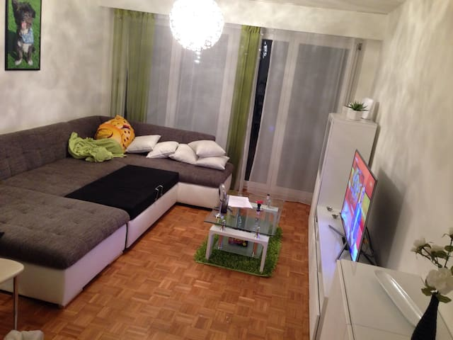 Schlafsofa in 2 Zimmerwohnung - Winterthur