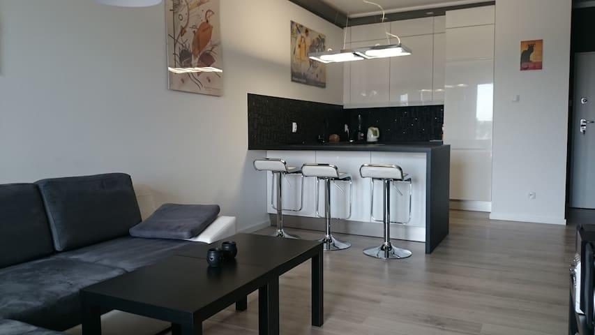 Nowoczesny apartament, Poznań - Poznań
