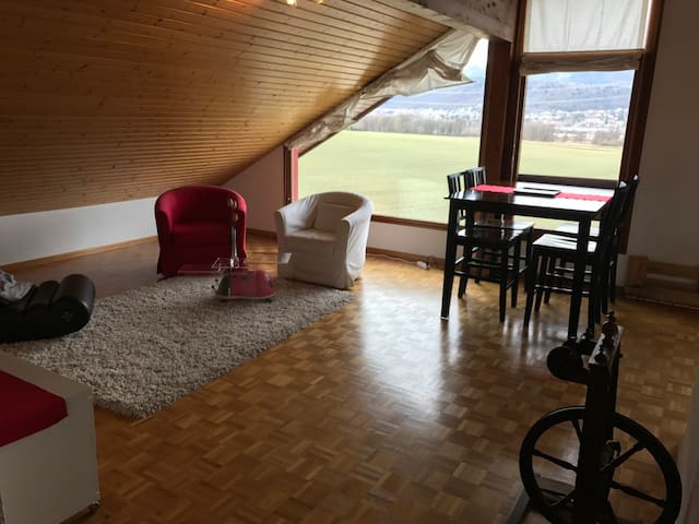 Top floor loft apartment with a view - Bogis-Bossey - Daire